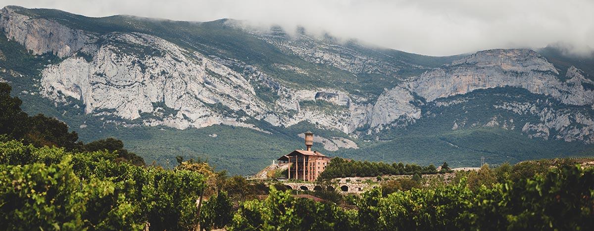 Jour 1 (250km): Saint Jean Pied De Port - Laguardia